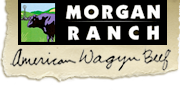Morgan Ranch Inc.